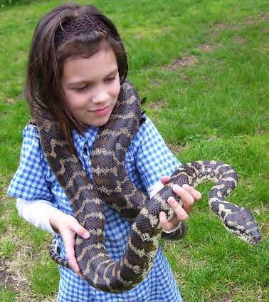 child-and-snake1